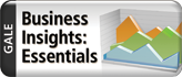 business_insights_essential